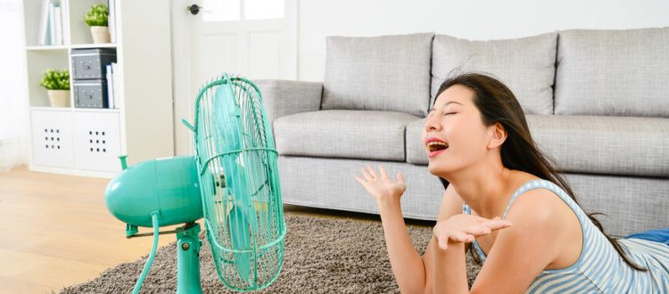 In the middle of summer, you may be feeling frustrated with regulating temperatures to keep you comfortable. Too hot. Too cold. You may find your thermostat getting a real workout and it is sure to show in your monthly energy bills. But our Philadelphia AC repair pros are here to offer some simple tips to […]
